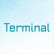 Terminal İletişim